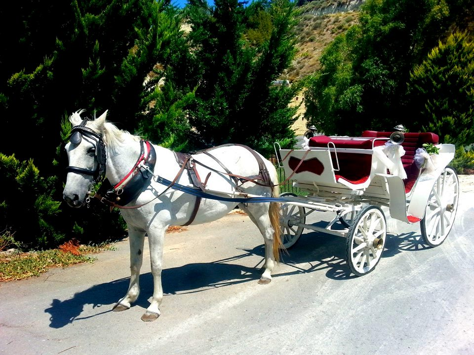 Αγράμπελη - Άμαξα γάμου